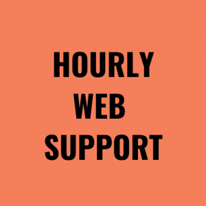 Hourly Web Support